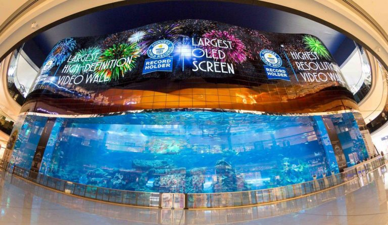 Dubai wins more world records with giant HD screen at aquarium